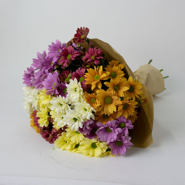 Bouquet of colorful chrysanthemums