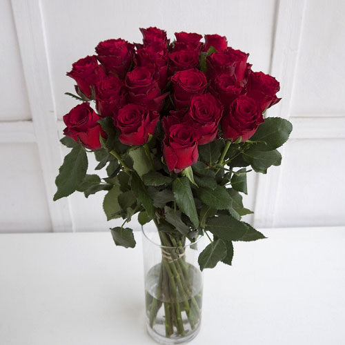 Red roses bouquet (from 10 to 101 roses